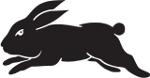 rabbitfree